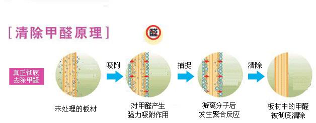 清除甲醛化合作用