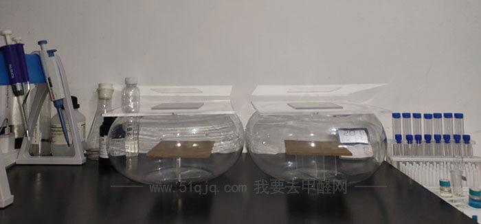 沪正纳米银基甲醛消除液对比试验——试验舱