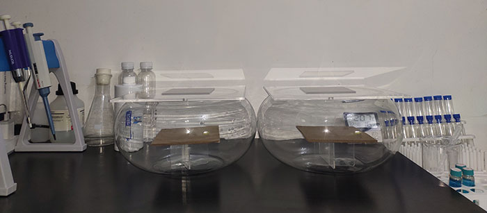 木童甲醛清除剂试验——对比实验舱